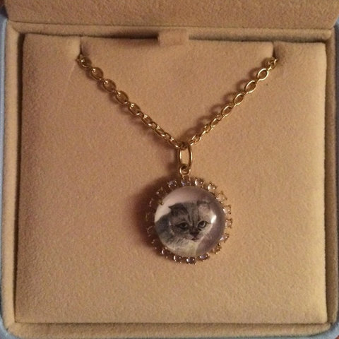 Pendant necklace featuring Taylor Swift's cat