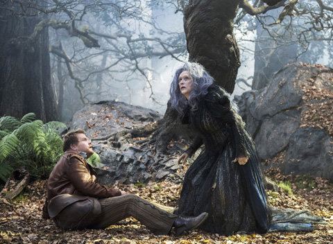 Into the Woods movie